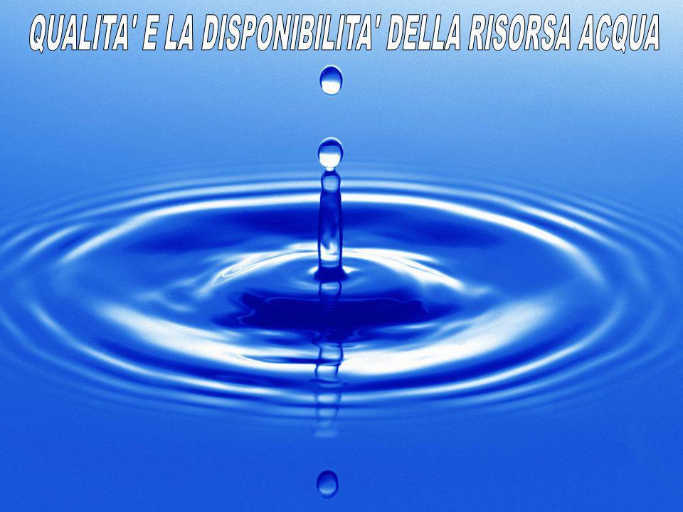L Italia è un paese potenzialmente ricco d acqua (il volume medio delle piogge risulta superiore alla media europea), la cui disponibilità teorica , tuttavia, non coincide con quella effettiva a causa della natura irregolare dei deflussi e delle carenze del sistema infrastrutturale esistente.