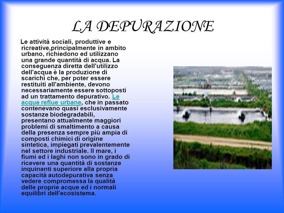 LA DEPURAZIONE Le attività sociali, produttive e ricreative,principalmente in ambito urbano, richiedono ed utilizzano una grande quantità di acqua. La