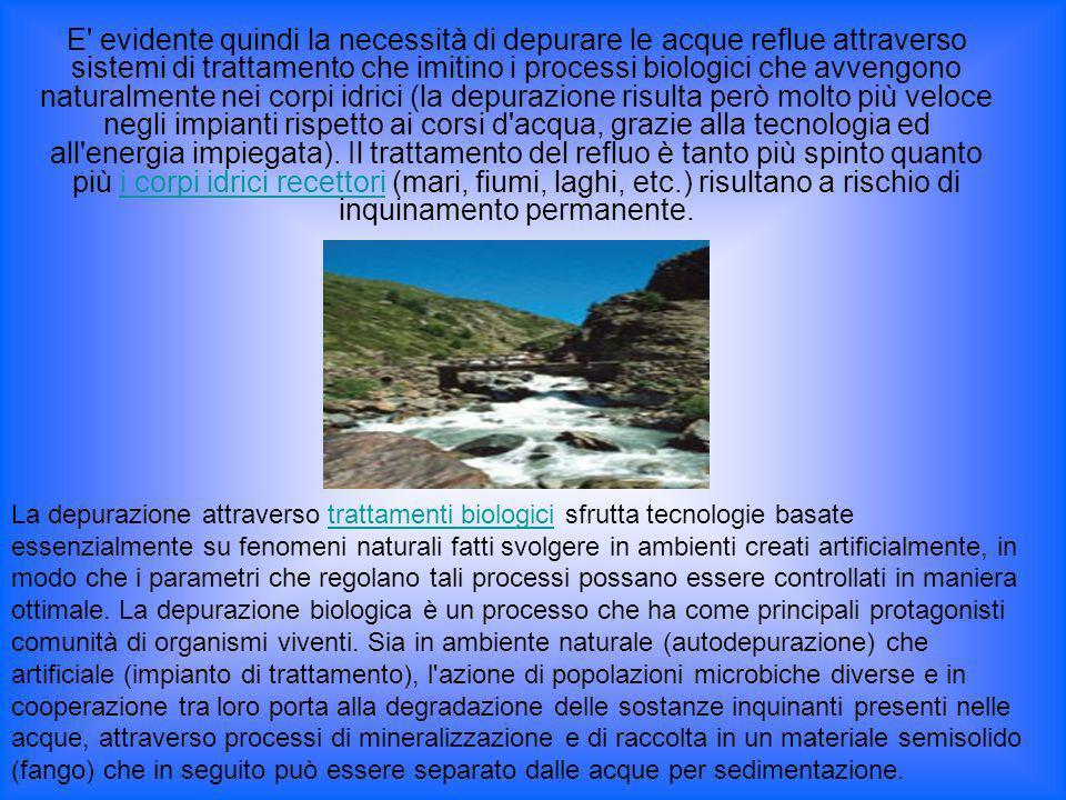 E' evidente quindi la necessità di depurare le acque reflue attraverso sistemi di trattamento che imitino i processi biologici che avvengono naturalme