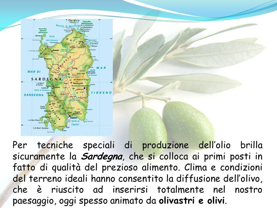 Per tecniche speciali di produzione dellolio brilla sicuramente la Sardegna, che si colloca ai primi posti in fatto di qualità del prezioso alimento.