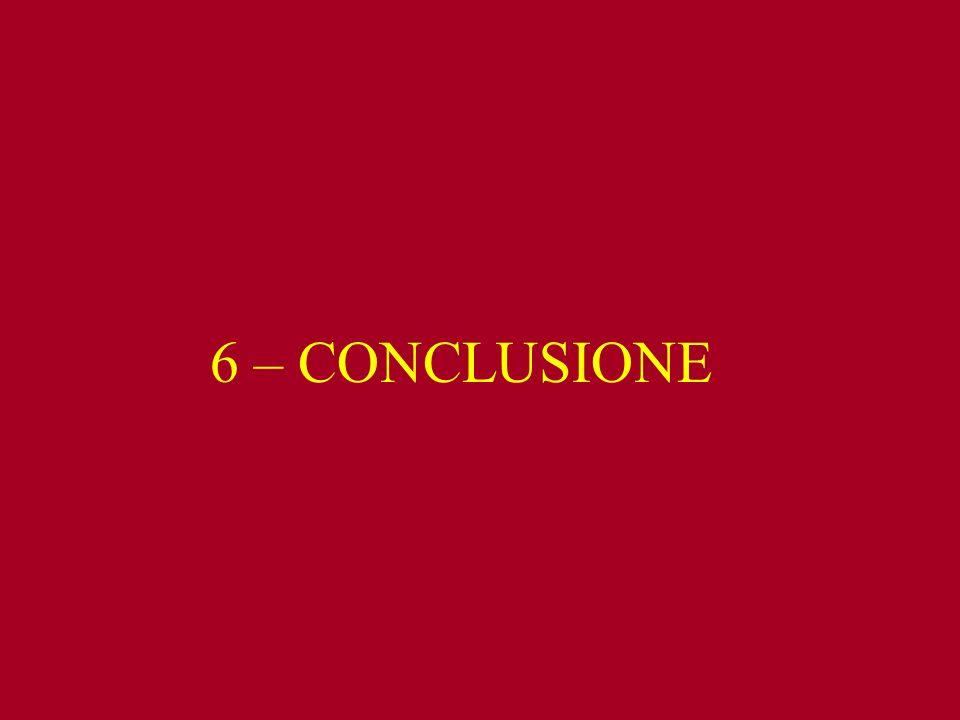 6 – CONCLUSIONE