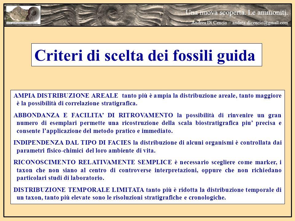 Criteri di scelta dei fossili guida AMPIA DISTRIBUZIONE AREALE tanto più è ampia la distribuzione areale, tanto maggiore è la possibilità di correlazi