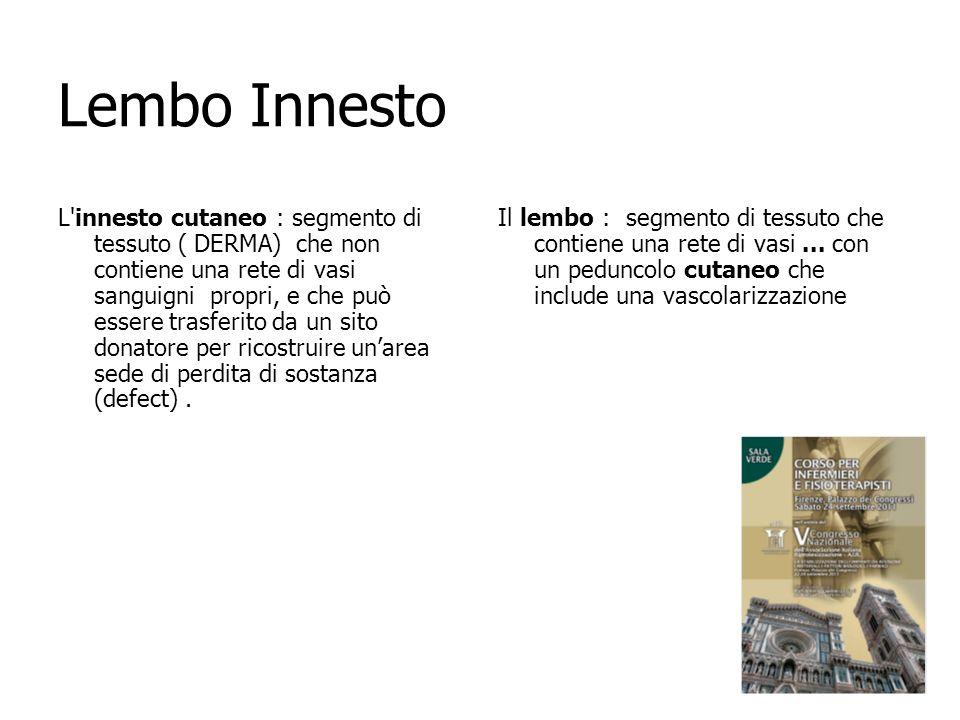 Lembo Innesto L'innesto cutaneo : segmento di tessuto ( DERMA) che non contiene una rete di vasi sanguigni propri, e che può essere trasferito da un s