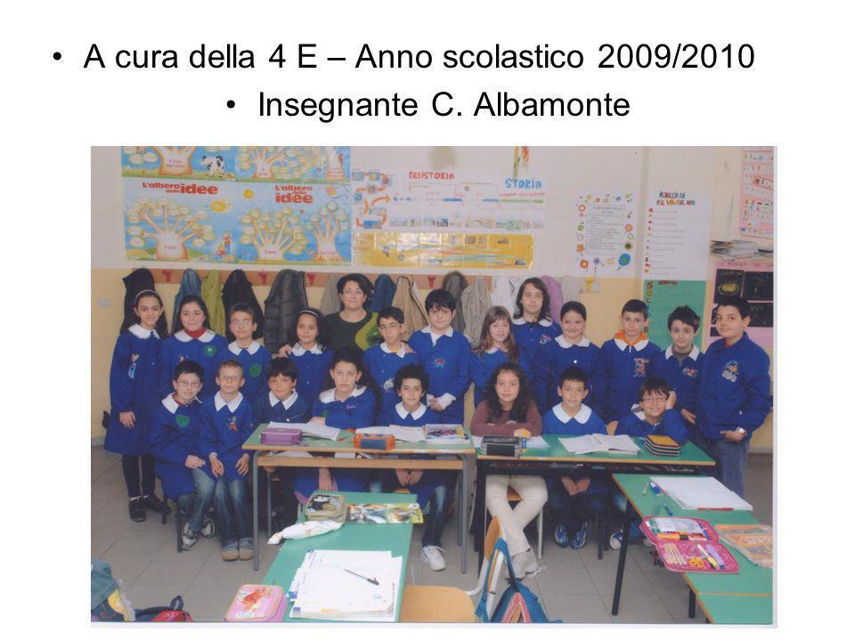 A cura della 4 E – Anno scolastico 2009/2010 Insegnante C. Albamonte