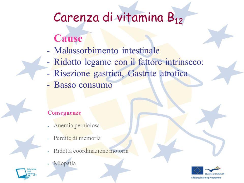 Carenza di vitamina B 12 Cause -Malassorbimento intestinale -Ridotto legame con il fattore intrinseco: -Risezione gastrica, Gastrite atrofica -Basso c