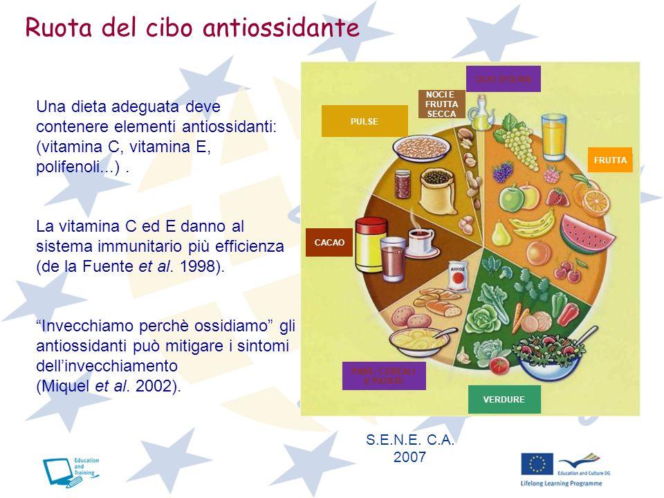 Ruota del cibo antiossidante VERDURE PANE, CEREALI E PATATE CACAO PULSE NOCI E FRUTTA SECCA OLIO DOLIVA FRUTTA S.E.N.E. C.A. 2007 Una dieta adeguata d