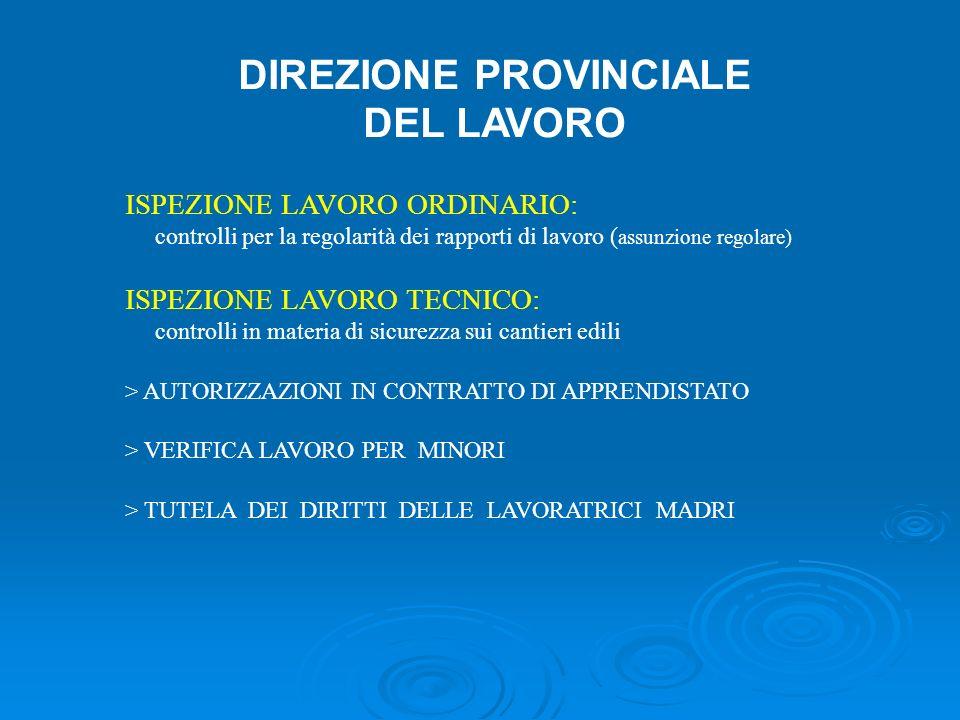 DIREZIONE PROVINCIALE DEL LAVORO ISPEZIONE LAVORO ORDINARIO: controlli per la regolarità dei rapporti di lavoro ( assunzione regolare) ISPEZIONE LAVOR