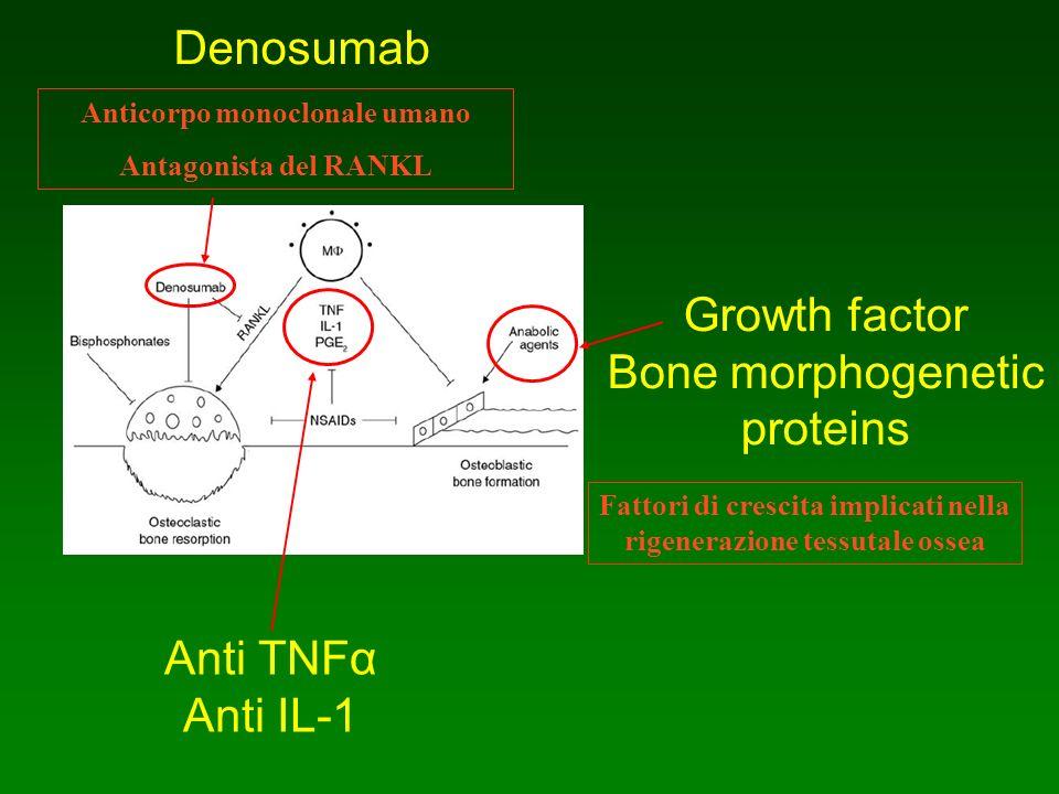 Denosumab Anticorpo monoclonale umano Antagonista del RANKL Growth factor Bone morphogenetic proteins Fattori di crescita implicati nella rigenerazion