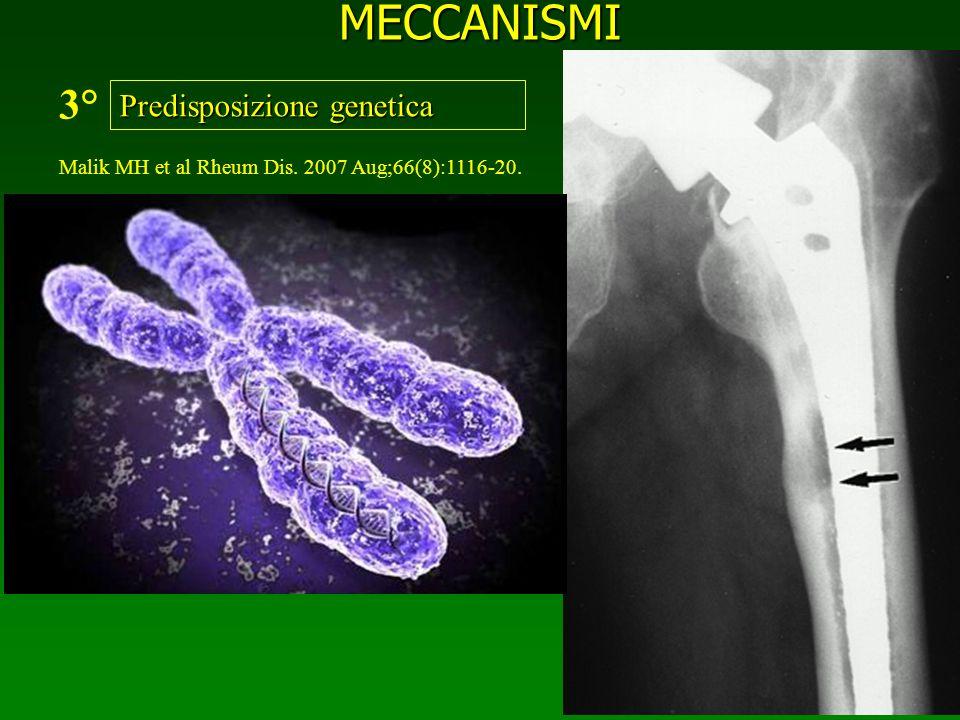 MECCANISMI Predisposizione genetica 3° Malik MH et al Rheum Dis. 2007 Aug;66(8):1116-20.