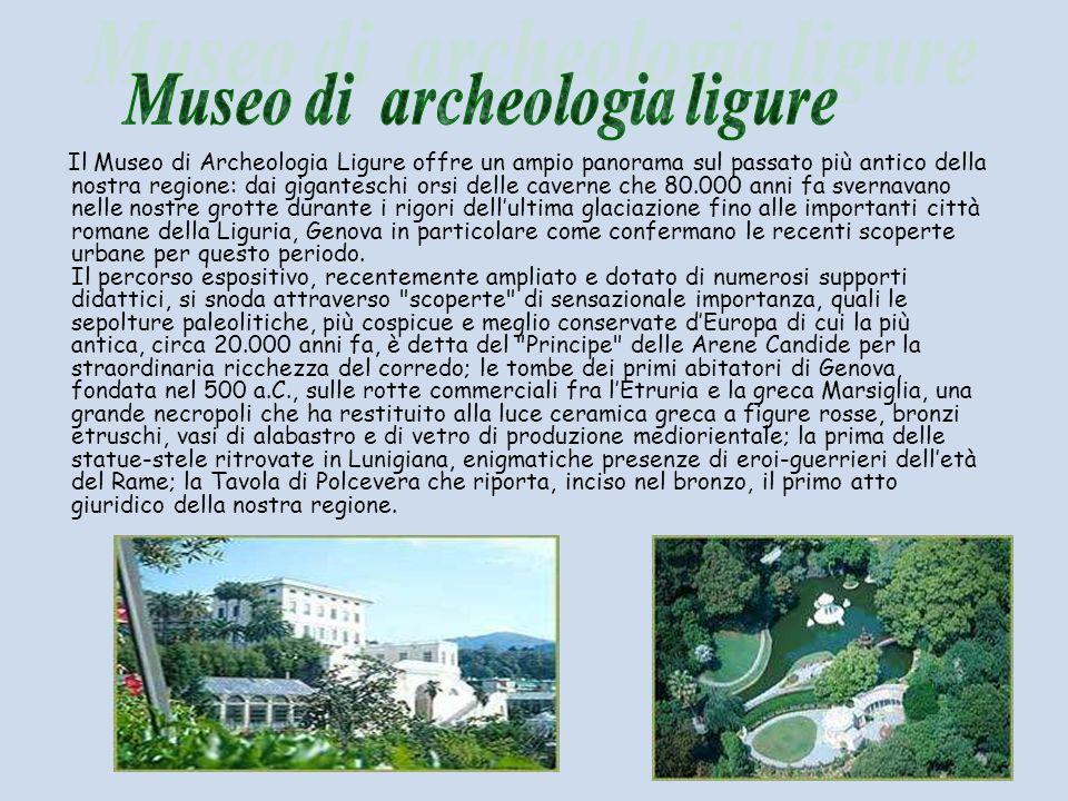 Il Museo di Archeologia Ligure offre un ampio panorama sul passato più antico della nostra regione: dai giganteschi orsi delle caverne che 80.000 anni