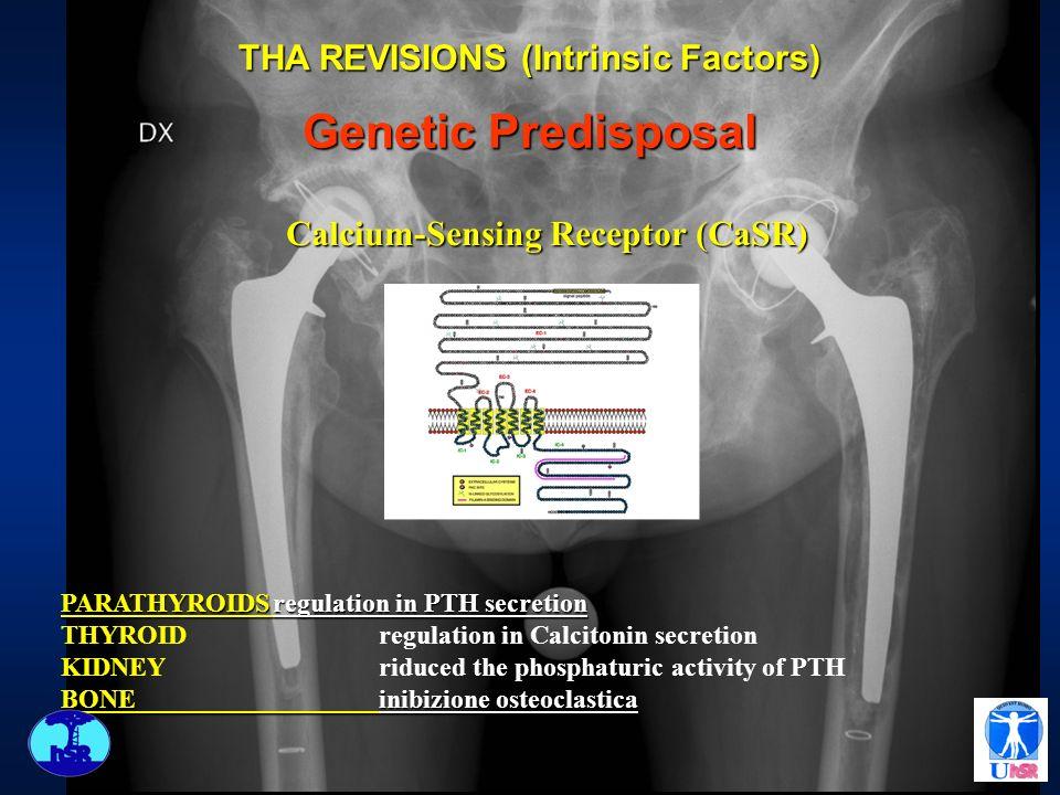PARATHYROIDSregulation in PTH secretion THYROIDregulation in Calcitonin secretion KIDNEYriduced the phosphaturic activity of PTH BONEinibizione osteoc