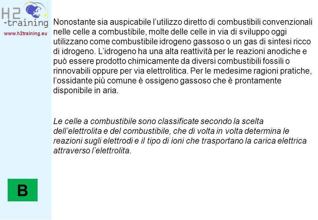 www.h2training.eu Nonostante sia auspicabile lutilizzo diretto di combustibili convenzionali nelle celle a combustibile, molte delle celle in via di s