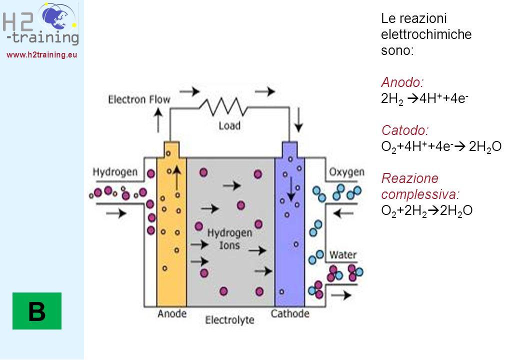 www.h2training.eu Le reazioni elettrochimiche sono: Anodo: 2H 2 4H + +4e - Catodo: O 2 +4H + +4e - 2H 2 O Reazione complessiva: O 2 +2H 2 2H 2 O B