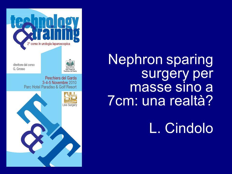 Nephron sparing surgery per masse sino a 7cm: una realtà? L. Cindolo