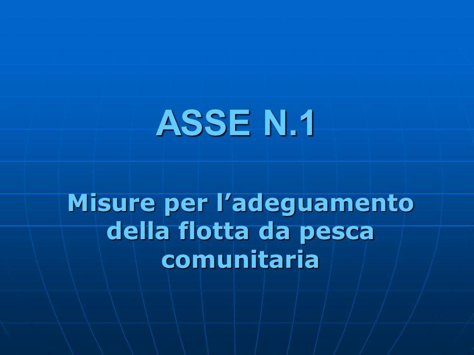 ASSE N.1 Misure per ladeguamento della flotta da pesca comunitaria
