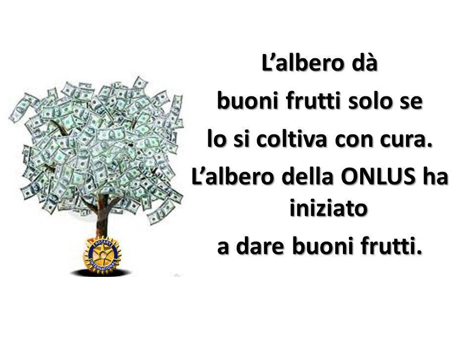 Lalbero dà buoni frutti solo se lo si coltiva con cura. Lalbero della ONLUS ha iniziato a dare buoni frutti.