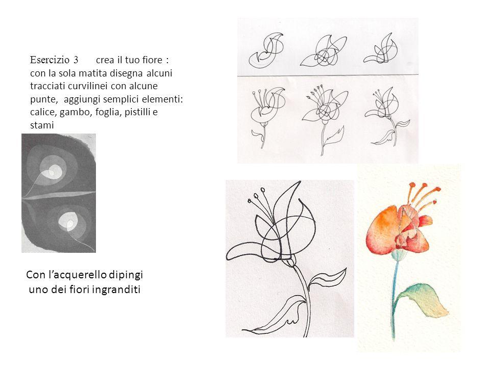 Esercizio 3 crea il tuo fiore : con la sola matita disegna alcuni tracciati curvilinei con alcune punte, aggiungi semplici elementi: calice, gambo, fo