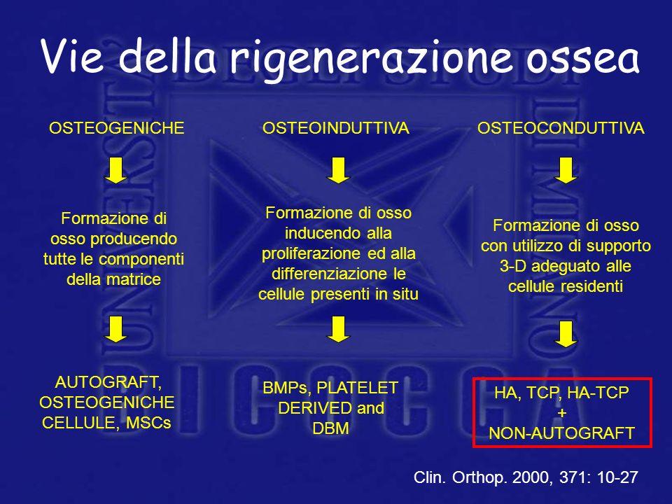 Vie della rigenerazione ossea OSTEOINDUTTIVAOSTEOCONDUTTIVAOSTEOGENICHE Formazione di osso producendo tutte le componenti della matrice Formazione di
