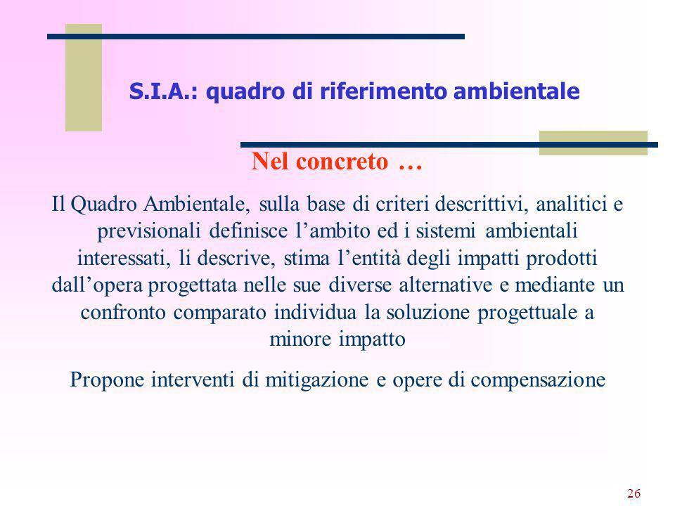 27 V.I.A.: I contenuti tecnici di uno S.I.A.Larticolazione di uno S.I.A.
