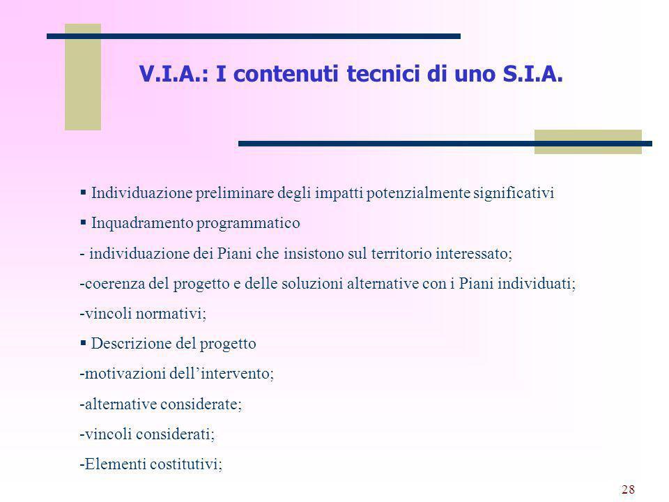 29 V.I.A.: I contenuti tecnici di uno S.I.A.