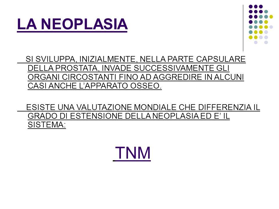 CLASSIFICAZIONE TNM T1-T2 neoplasia intracapsulare T3-T4 neoplasia con estensione extracapsulare N : COINVOLGIMENTO LINFONODALE M :COINVOLGIMENTO METASTATICO