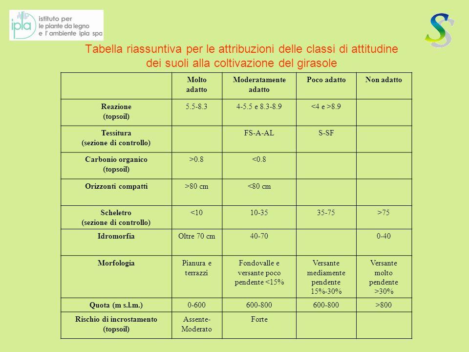 Tabella riassuntiva per le attribuzioni delle classi di attitudine dei suoli alla short-rotation forestry con robinia CLASSIMolto adatto Moderatamente adatto Poco adattoNon adatto Reazione (Topsoil) 5,5 – 7,84,5 - 5,5 e 7,8-8,5 8,5 CaCO 3 % (sezione di controllo) <1515-25>25 Sostanza Organica% (nel topsoil) >1<1 S.B.
