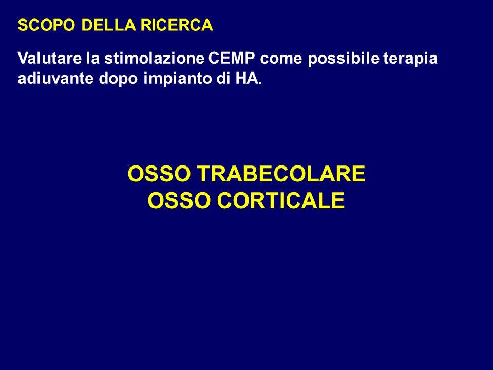 SCOPO DELLA RICERCA OSSO TRABECOLARE OSSO CORTICALE Valutare la stimolazione CEMP come possibile terapia adiuvante dopo impianto di HA.