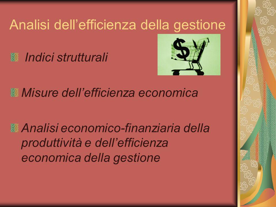 Analisi dellefficienza della gestione Indici strutturali Misure dellefficienza economica Analisi economico-finanziaria della produttività e dellefficienza economica della gestione