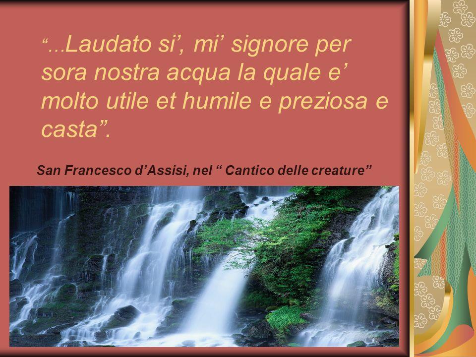 … Laudato si, mi signore per sora nostra acqua la quale e molto utile et humile e preziosa e casta.