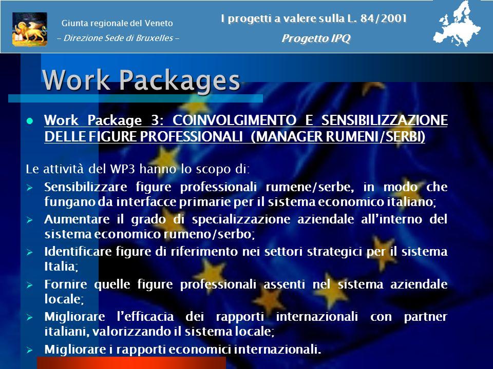 Work Packages Work Package 3: COINVOLGIMENTO E SENSIBILIZZAZIONE DELLE FIGURE PROFESSIONALI (MANAGER RUMENI/SERBI) Le attività del WP3 hanno lo scopo