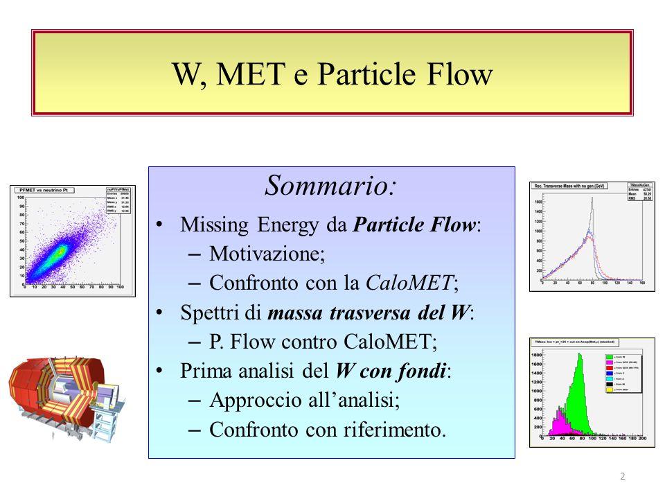 Sommario: Missing Energy da Particle Flow: – Motivazione; – Confronto con la CaloMET; Spettri di massa trasversa del W: – P.