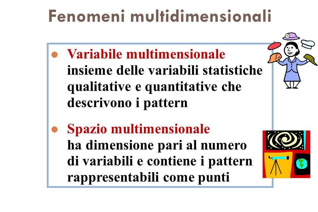 l Variabile multimensionale insieme delle variabili statistiche qualitative e quantitative che descrivono i pattern l Spazio multimensionale ha dimens