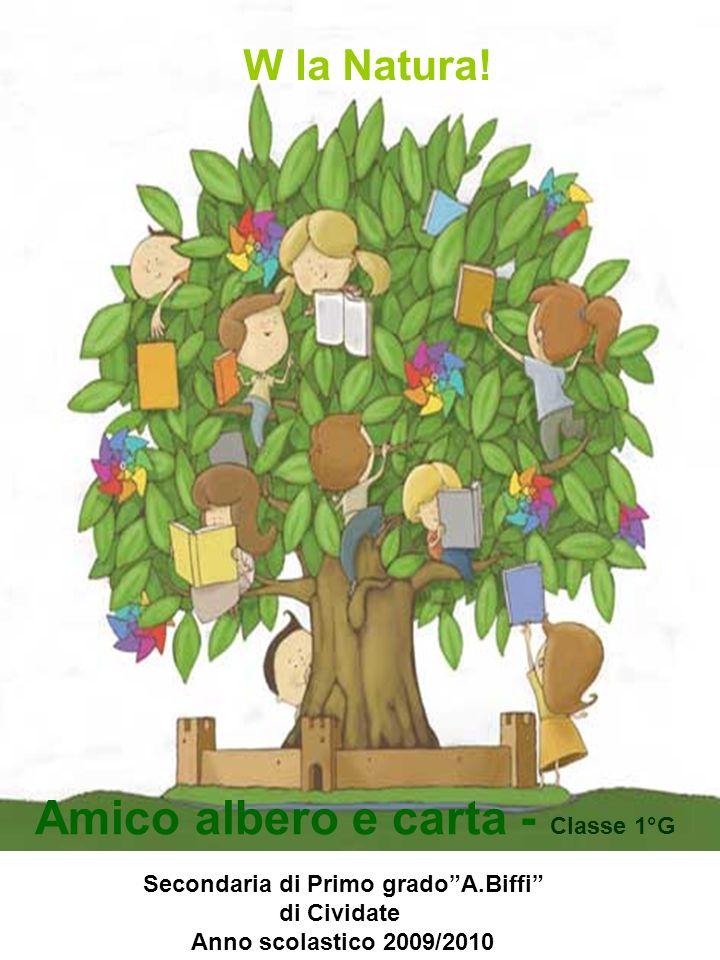 Secondaria di Primo gradoA.Biffi di Cividate Anno scolastico 2009/2010 W la Natura! Amico albero e carta - Classe 1°G
