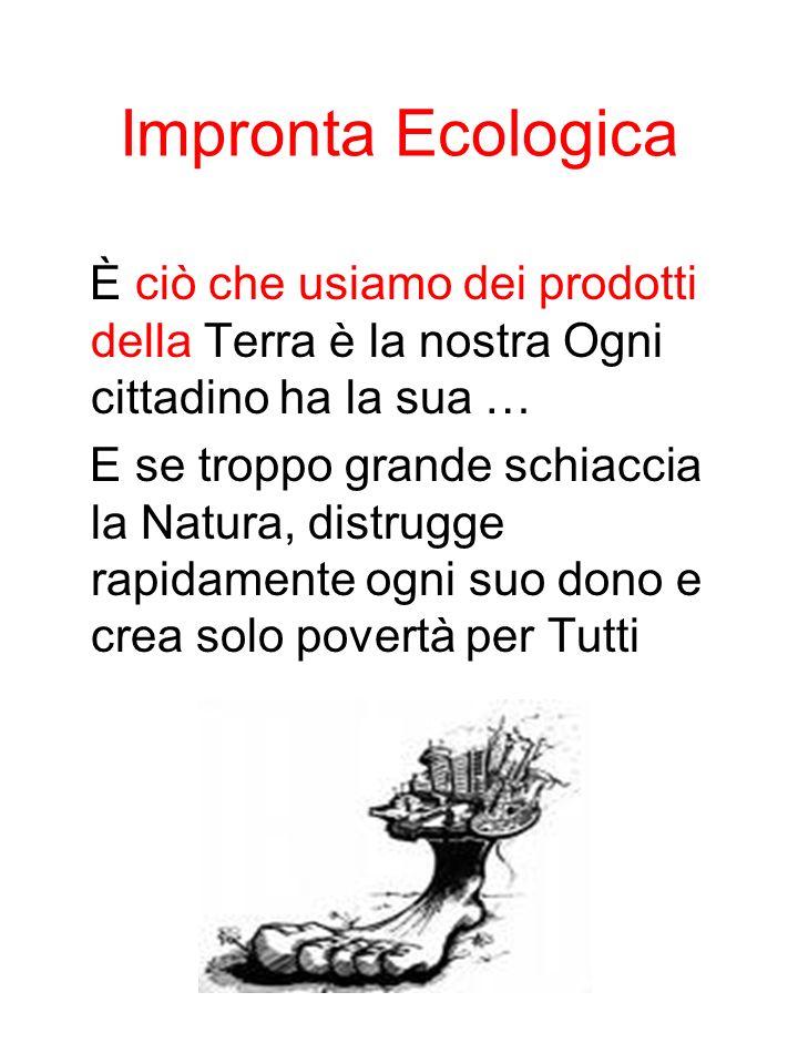 Impronta Ecologica È ciò che usiamo dei prodotti della Terra è la nostra Ogni cittadino ha la sua … E se troppo grande schiaccia la Natura, distrugge