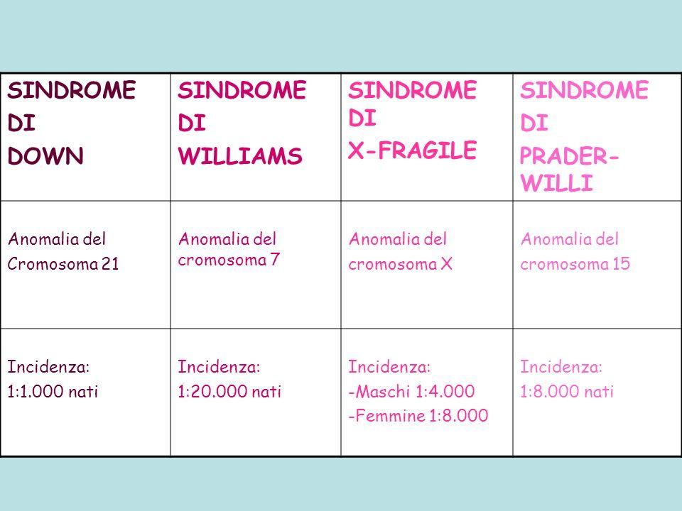 SINDROME DI DOWN SINDROME DI WILLIAMS SINDROME DI X-FRAGILE SINDROME DI PRADER- WILLI Anomalia del Cromosoma 21 Anomalia del cromosoma 7 Anomalia del