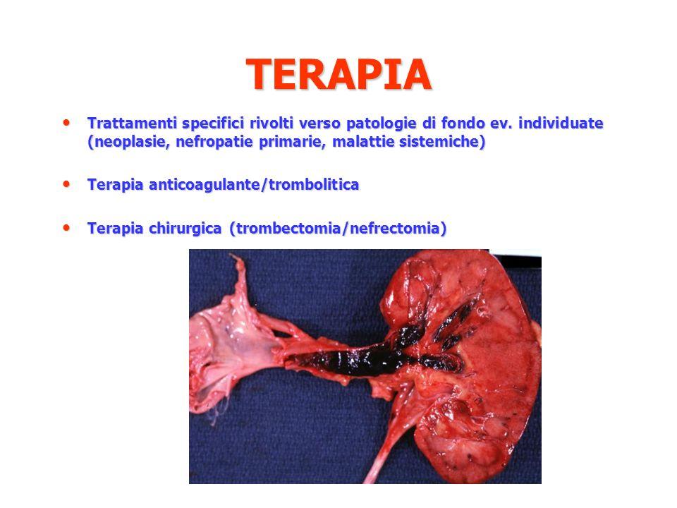 TERAPIA Trattamenti specifici rivolti verso patologie di fondo ev. individuate (neoplasie, nefropatie primarie, malattie sistemiche) Trattamenti speci