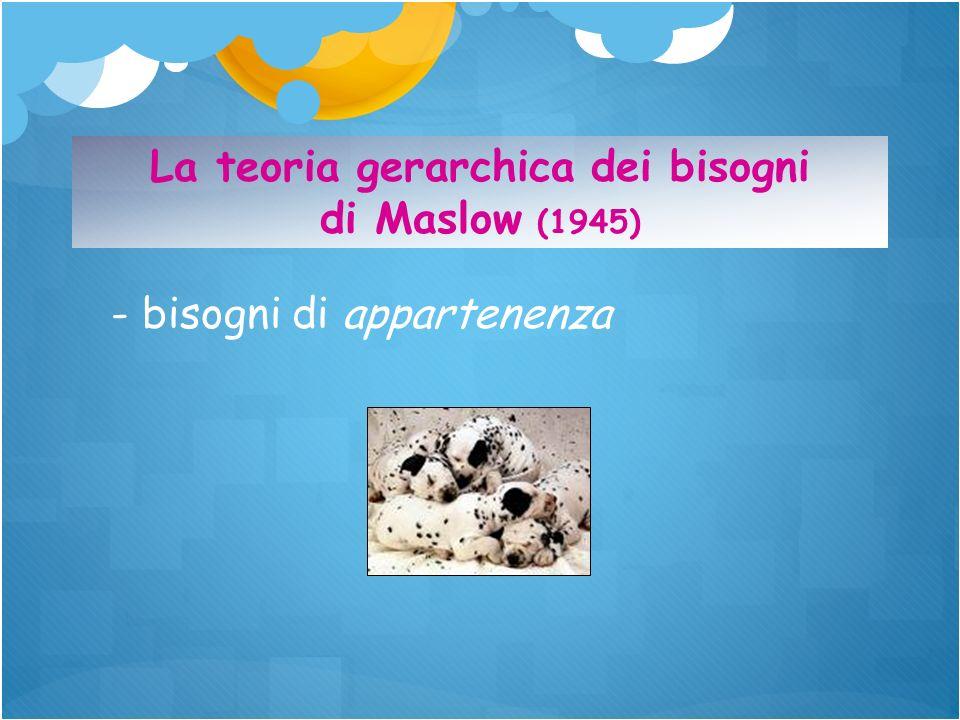 - bisogni di appartenenza La teoria gerarchica dei bisogni di Maslow (1945)