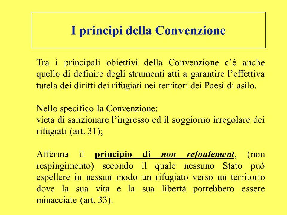 I principi della Convenzione Tra i principali obiettivi della Convenzione cè anche quello di definire degli strumenti atti a garantire leffettiva tute