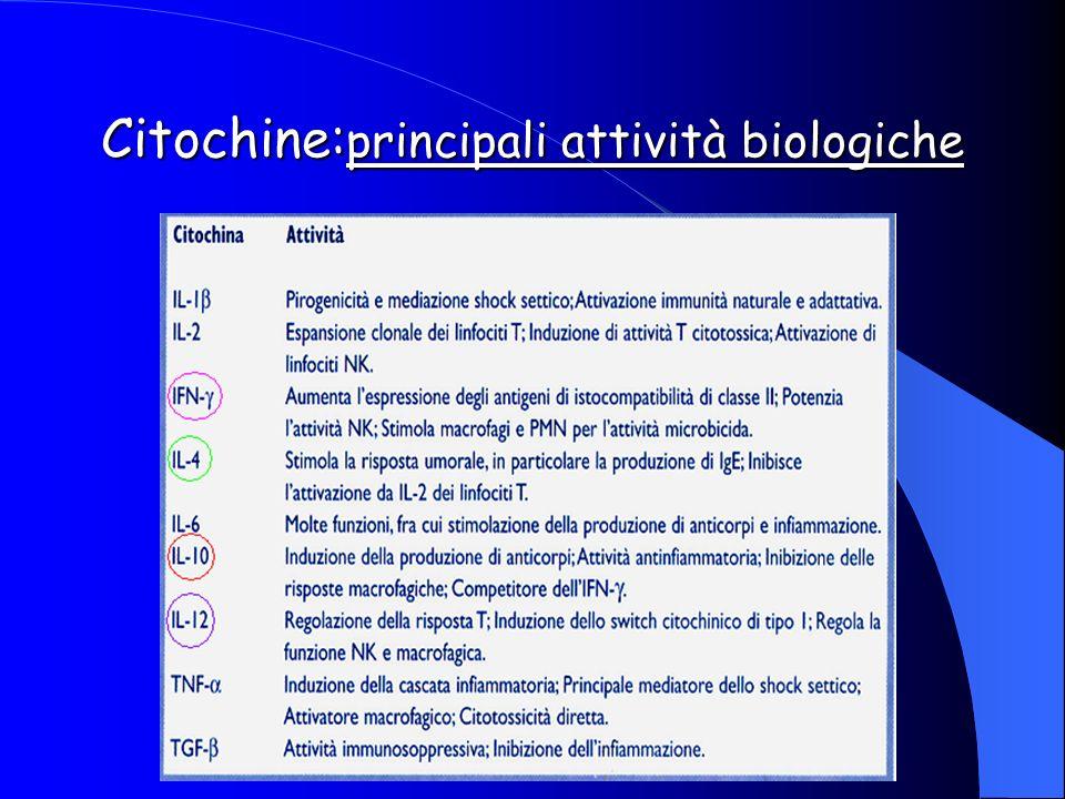 Citochine: principali attività biologiche