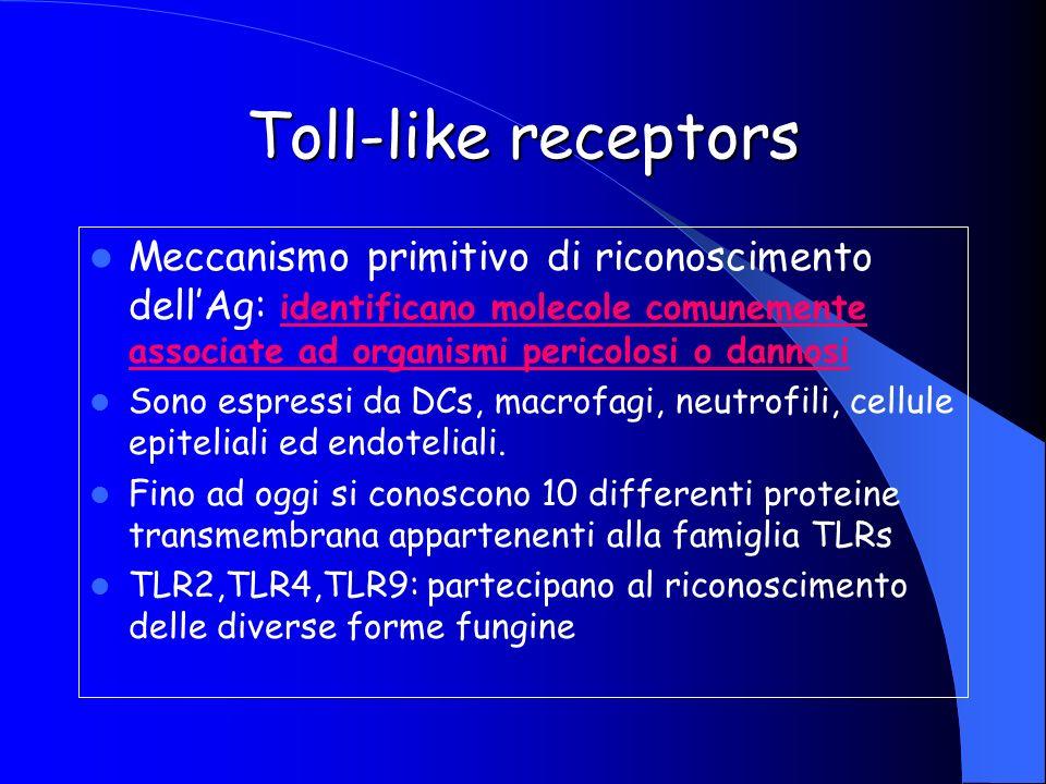 Toll-like receptors Meccanismo primitivo di riconoscimento dellAg: identificano molecole comunemente associate ad organismi pericolosi o dannosi Sono