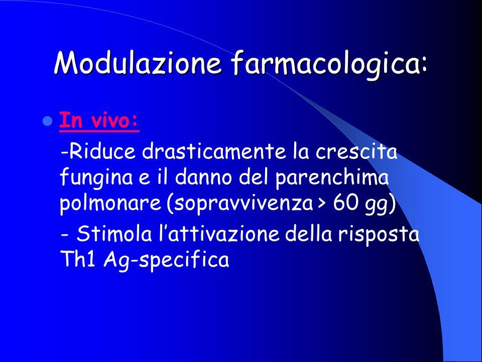 Modulazione farmacologica: In vivo: -Riduce drasticamente la crescita fungina e il danno del parenchima polmonare (sopravvivenza > 60 gg) - Stimola la