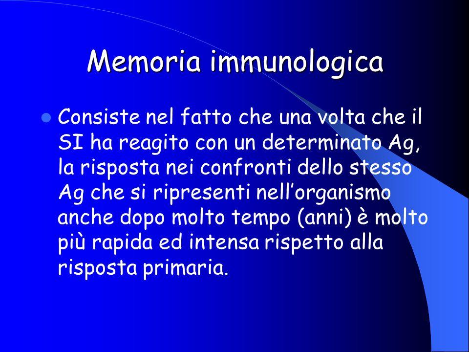 Memoria immunologica Consiste nel fatto che una volta che il SI ha reagito con un determinato Ag, la risposta nei confronti dello stesso Ag che si rip