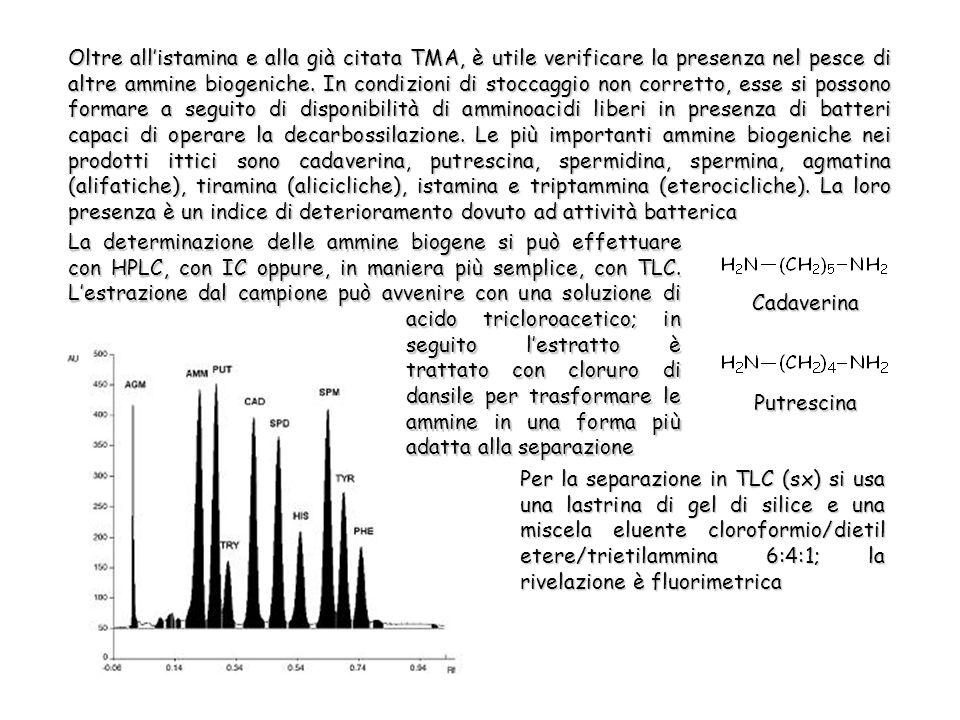 Oltre allistamina e alla già citata TMA, è utile verificare la presenza nel pesce di altre ammine biogeniche.