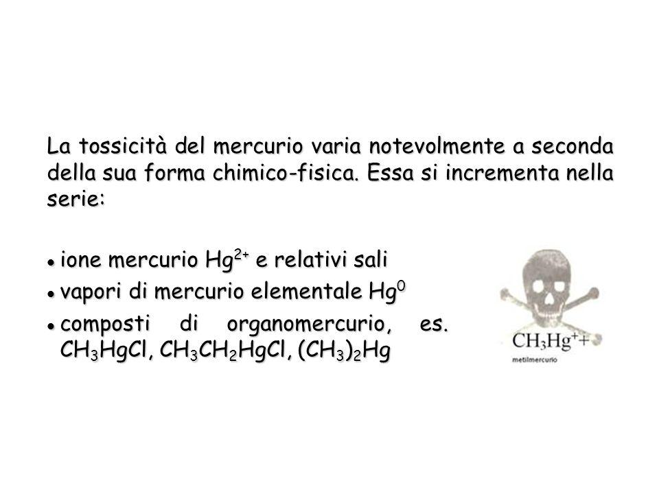 ione mercurio Hg 2+ e relativi sali ione mercurio Hg 2+ e relativi sali vapori di mercurio elementale Hg 0 vapori di mercurio elementale Hg 0 composti di organomercurio, es.
