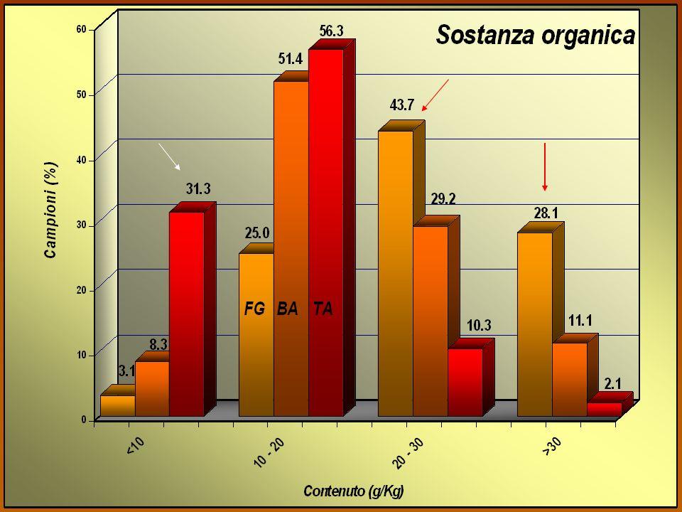 Campionamenti Scheletro; Scheletro; Carbonati totali; Carbonati totali; Sostanza organica; Sostanza organica; Classi tessiturali, Classi tessiturali,