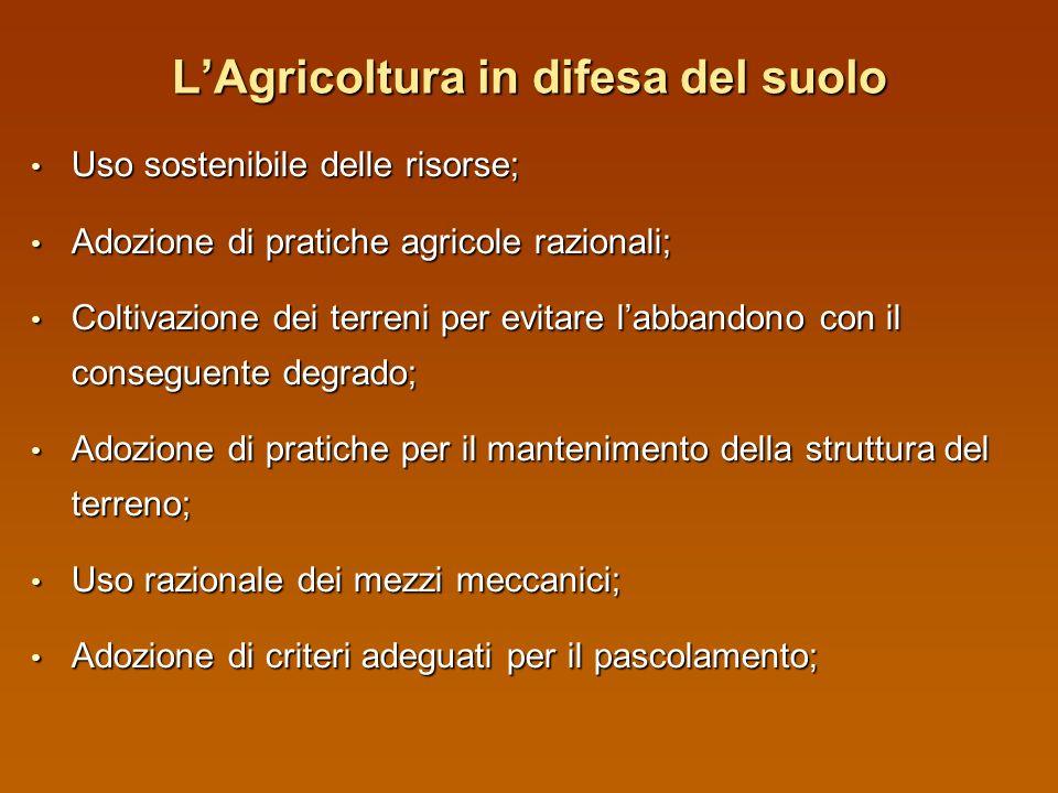 Gli impegni di ecocondizionalità ( Gli impegni di ecocondizionalità (REG. (CE) 1782/03) Interventi di regimazione temporanea delle acque superficiali
