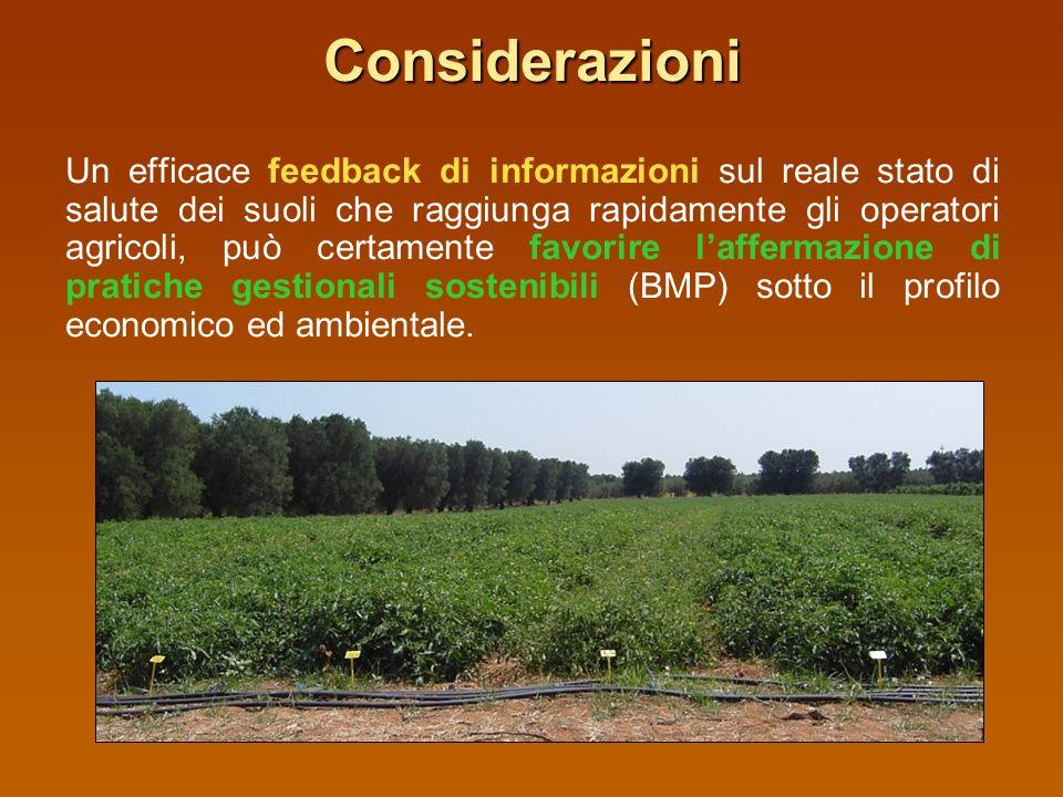 Considerazioni il monitoraggio degli effetti delluso del suolo e delle attività antropiche, mediante le indagini chimico-fisiche, rappresenta uno stru