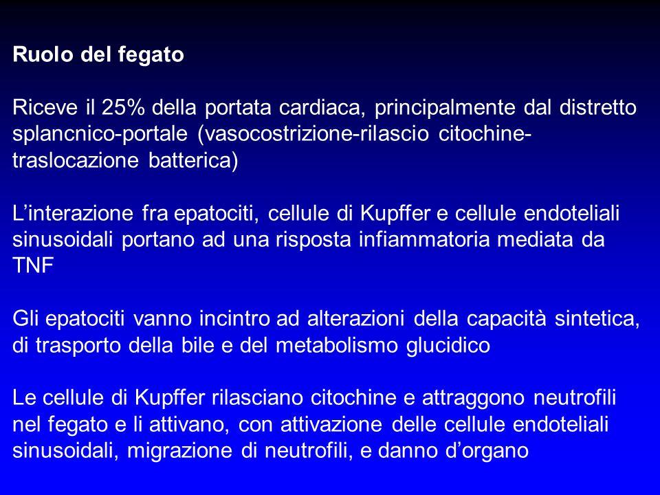 Ruolo del fegato Riceve il 25% della portata cardiaca, principalmente dal distretto splancnico-portale (vasocostrizione-rilascio citochine- traslocazi