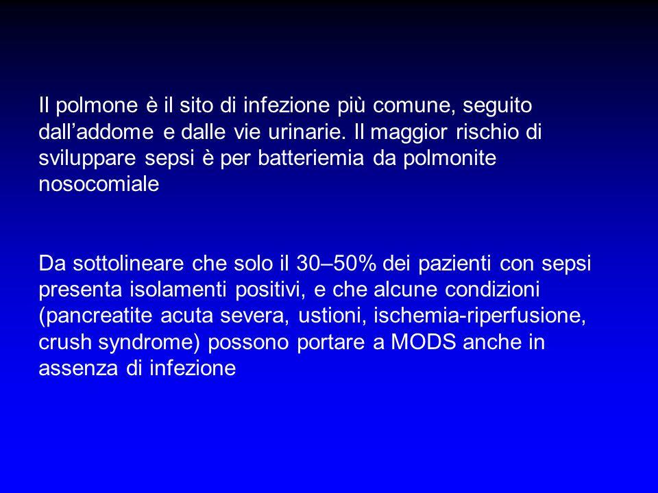 Il polmone è il sito di infezione più comune, seguito dalladdome e dalle vie urinarie. Il maggior rischio di sviluppare sepsi è per batteriemia da pol