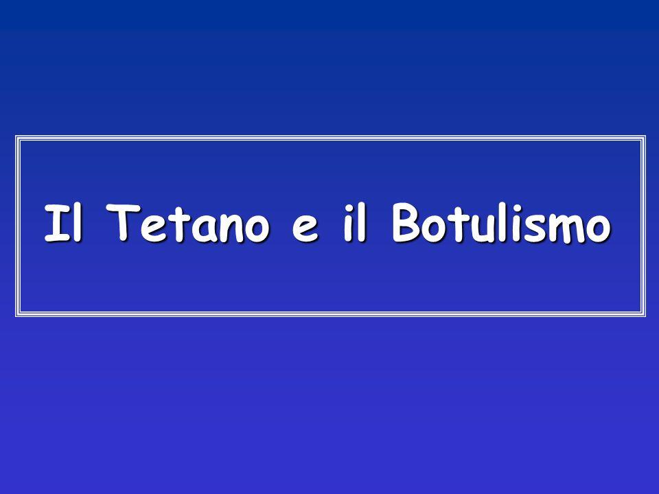 Il Tetano e il Botulismo Il Tetano e il Botulismo
